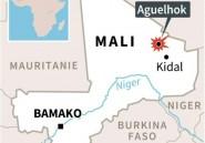 Huit Casques bleus tchadiens tués dans l'une des pires attaques contre l'ONU au Mali