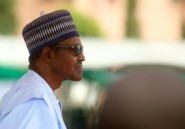 Gouvernement nigérian: pas de lien entre la suspension d'Onnoghen et les élections