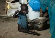 Soudan du Sud: la faim progresse malgré l'accord de paix, selon l'ONU
