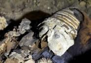 Un sarcophage égyptien de plus de 2.500 ans ouvert en direct