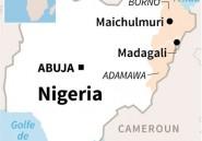 Nigeria: 14 civils tués dans des attaques de Boko Haram