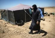 Au Maroc, éleveurs nomades et paysans sédentaires se disputent la terre
