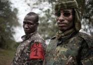 Centrafrique: un collectif exige le limogeage de chefs de groupes armés après des tueries