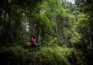 Ghana: des défenseurs de l'environnement protestent contre un projet de mine de bauxite