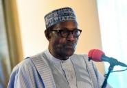 Le Nigeria reçoit le Venezuela et la Corée du Nord pour célébrer la Démocratie