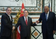 """Libye: Tunis, Alger et Le Caire dénoncent les flux """"continus"""" d'armes et de """"terroristes"""""""
