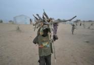 Bassin du lac Tchad: un fonds de 100 millions de dollars pour contrer les effets de Boko Haram