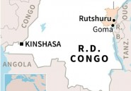 RDCongo: le chef de la rébellion rwandaise FDLR tué par l'armée
