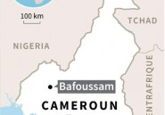 Une trentaine de morts dans un glissement de terrain au Cameroun