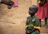 Au Burkina Faso, la difficile lutte pour sauver les enfants du paludisme