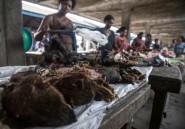 Viande de brousse: la Belgique met en garde contre les risques pour la santé et l'environnement