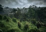RDC: deux civils tués et un garde blessés dans le Sud-Kivu
