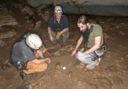 Au Gabon, la grotte d'Iroungou, précieux vestige d'une Histoire méconnue