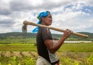Pour les Angolaises, la double peine du changement climatique