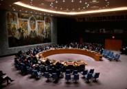 Soudan du Sud: l'ONU prolonge l'embargo sur les armes jusqu'en mai 2021