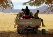 Niger: Boko Haram