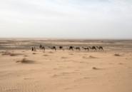 L'archéologue, la caravane et le désert
