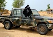 Nigeria: les jihadistes d'ISWAP