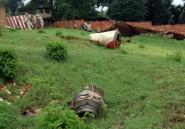 Attentat déclencheur du génocide au Rwanda: décision vendredi sur la validité du non-lieu