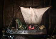 RDC: début d'une campagne massive de vaccination contre le choléra