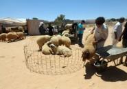 En Libye, ambiance morose