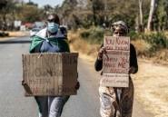 """""""Peur que l'espoir disparaisse"""": au Zimbabwe, militants et opposants face"""