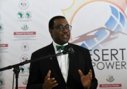 Le Nigérian Akinwumi Adesina réélu président de la BAD, malgré la polémique