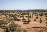 Les déplacés, un fardeau pour les villes du Sahel