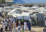 Au moins 43 agriculteurs tués par Boko Haram dans le nord-est du Nigeria, jour d'élection