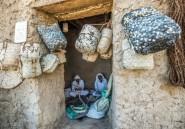 A Siwa, les Berbères d'Egypte tiennent