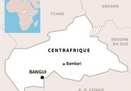 Centrafrique: les rebelles s'emparent de la quatrième ville du pays