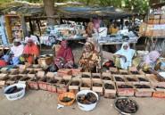 Présidentielle au Niger: